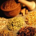 La medicina naturale – terza parte