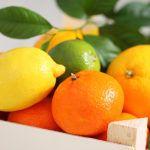 Coldiretti Sicilia ha vinto, bibite all'arancia con più succo