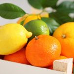 #Siracusa. Rubano 500 chili di arance a Cassibile, arrestati