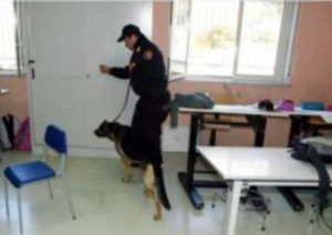 Carabinieri con cane