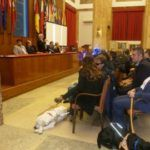 #Messina. Consegnati i cani guida del Centro Hellen Keller
