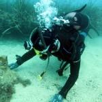 #Messina. Incontro in Prefettura sulle prospettive occupazionali della subacquea