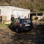 #Ragusa. Lotta al lavoro nero in agricoltura, sanzioni per 145 mila euro
