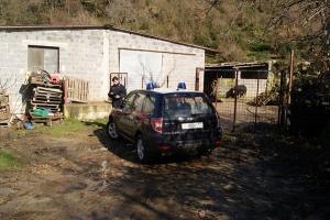 Controllo_azienda_di_suini carabinieri