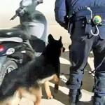 #Siracusa. Arrestato albanese ad Augusta, nascondeva oltre un chilo di cocaina