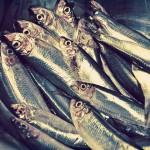 #Trapani. Il prodotto ittico locale avrà un suo marchio