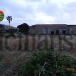 #Messina. Andava a caccia di quaglie con reti, denunciato 71enne