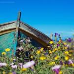 #Meteo dello Stretto. Ondata di caldo in arrivo: nella prima decade di maggio sarà estate