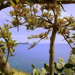 #Meteo in Sicilia. Qualche nube oggi, bello sabato, scirocco domenica