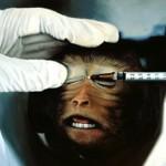 #CrueltyFree. Bellezza senza crudeltà: tutte le aziende cosmetiche che non testano i prodotti sugli animali