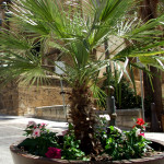 #Agrigento. Isola pedonale a Sicacca, chiusura del varco in via Garibaldi