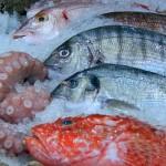 #Trapani. Controlli al mercato ittico, sequestrati 50 chili di pesce