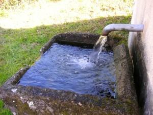 water-trough-338382_640