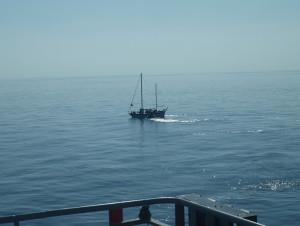 Immagine tratta dal sito della Guardia Costiera svedese - kustbevakningen