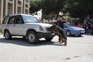 Polizia_agrigento_Esseneto (8)