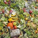#Messina. Progetto SAVE: in 7 giorni oltre 2 mila chili di scarti alimentari