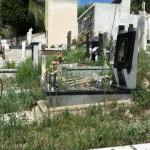 #Messina. Al Cimitero di Pace degrado assoluto, Garofalo scrive ad Accorinti