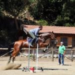 #Messina. CUS UniMe, il Centro Equitazione aperto anche nella pausa estiva