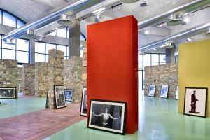 Sala Museo dell'Argilla 1