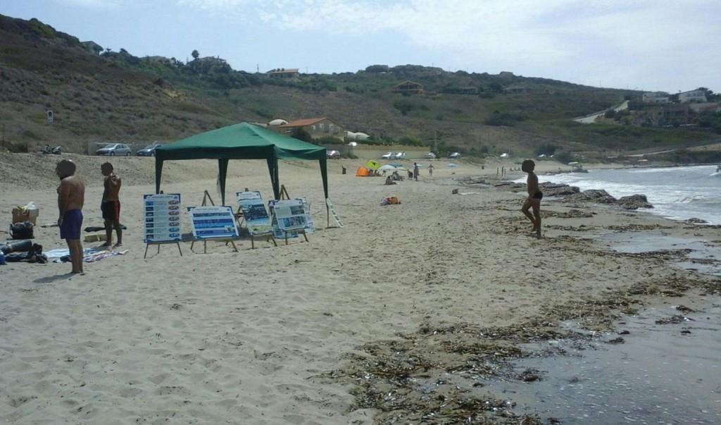 Tartarughe Sciacca (1)