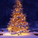 Eventi. Natale e Capodanno a Messina, entro il 4 dicembre le proposte alla IV Circoscrizione