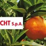 #Barcellona. Last Orange, la Canditfrucht dovrà pagare 70 mila euro