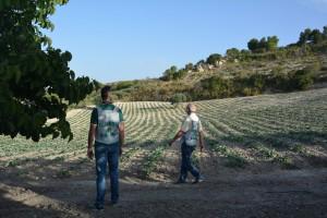 Guardia di Finanza - Catania- campagna (1)
