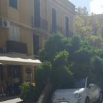#Messina. Alberi a rischio: limitazioni viarie fino a gennaio