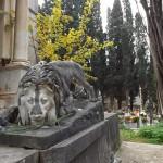 """#Palermo. La bellezza in luoghi insospettabili: è il """"Cemetery Tour"""""""