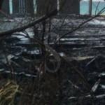 #Milazzo. Incendio devasta il lido AISM a San Papino