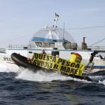 """#Sicilia. Tutela del mare, Greenpeace: """"Basta con i permessi speciali di pesca"""""""