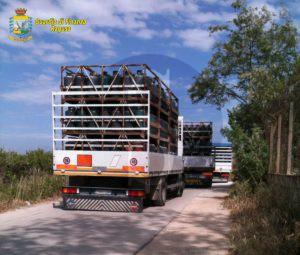 Ragusa_Guardia_di_Finanza_Sicilians_2_28_4_16