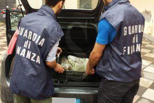 Marijuana_Guardia di Finanza_Catania_Sicilians_23_5_16