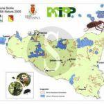 #Messina. Progetti LIFE: stamani studenti in visita al museo delle scienze