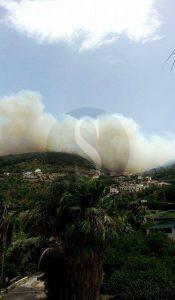 Incendio_capod'Orlando_Naso