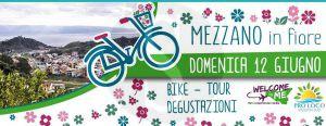 Mezzano_in_fiore