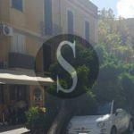 #Messina. Abbattimento alberature, tavolo tecnico di Ialacqua