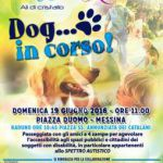 #Messina. Dog… in corso, per l'autismo