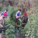 #Catania. Operazione Nebrodi, 9 arresti per associazione mafiosa e tentata estorsione