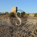 #Campofelice. Pulizia con le ruspe nel borgo medievale