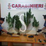 #Messina. Carabiniere di Patti arrestato per possesso di droga