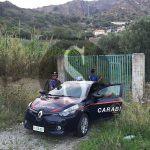 #Messina. Sorpresi a rubare limoni, un arresto e una denuncia
