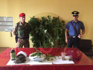droga_carabinieri_sicilians