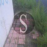 #Merì. Viale dello Sport, marciapiede invaso dalle erbacce
