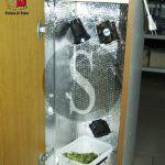 #Barcellona. Coltivava marijuana nel bagno: arrestato 27enne