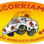 #Messina. Campagna per la microcippatura dei cani: domani la presentazione