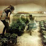 #Partinico. Piantagione droga in magazzino, arrestato 38enne