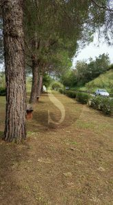 santa_lucia_del_mela_sicilians