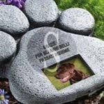 #Messina. Realizzazione di un cimitero per animali, nota di Ialacqua