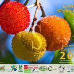#Messina. Presentazione della VI edizione del Calendario Ambientale